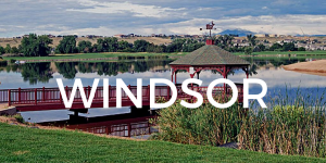 Windsor Button